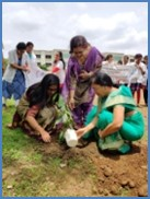 Tree Plantation at VSPM DCRC, Hingna premises